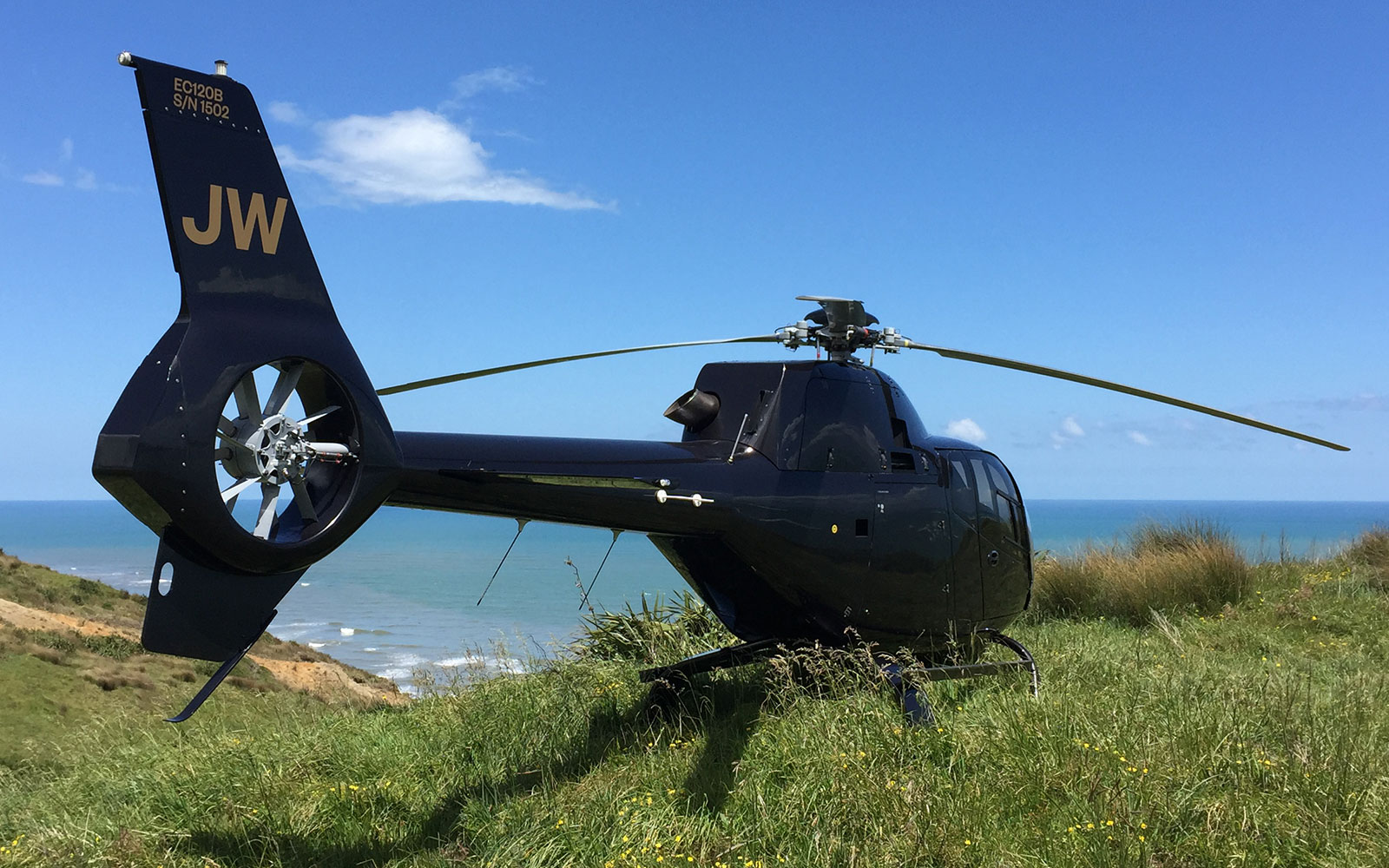 helicopter site visit